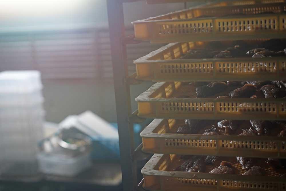 【みりん干し専門店】大正時代創業の老舗「中村海産」を取材!実際に食べた感想も紹介
